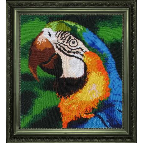 Набор для вышивания бисером Butterfly 504 Попугай фото