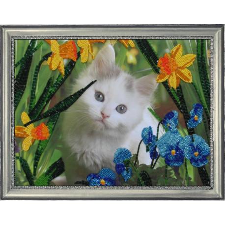 Набор для вышивания бисером Butterfly 554 Котенок в цветах фото