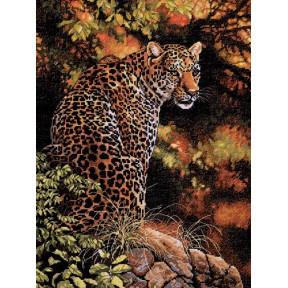 Набор для вышивки крестом Dimensions 35209 Leopard's Gaze