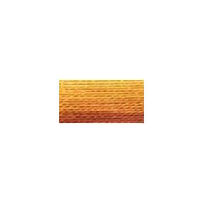 Мулине Variegated Mustard DMC111