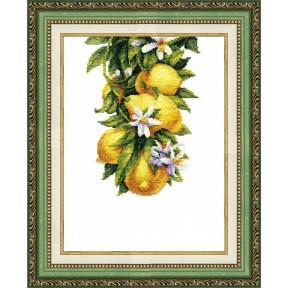 Набор для вышивания крестом Чарівна Мить ВТ-136 Полезные лимоны