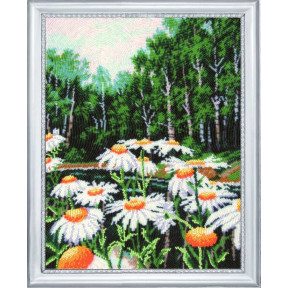 Набор для вышивания бисером Butterfly 358 Ромашковый край