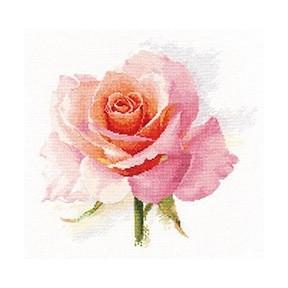 Набор для вышивки крестом Алиса 2-40 Дыхание розы. Нежность фото