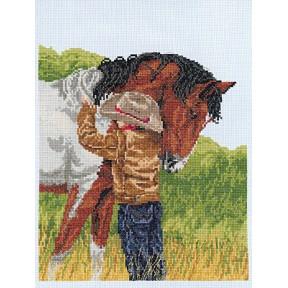 Набор для вышивания Janlynn 008-0209 Horse