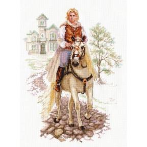 Набор для вышивки крестом Алиса 4-17 Юноша на белом коне фото