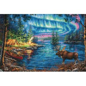 Набор для вышивания Dimensions 70-35312 Northern Night