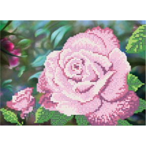 Рисунок на ткани Повитруля Б6 13 Королева сада.Розовая фото
