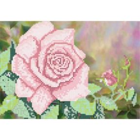 Рисунок на ткани Повитруля Б6 14 Королева сада.Белая фото